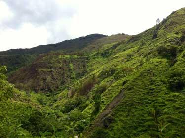 Тайна продолжительной жизни в Эквадоре
